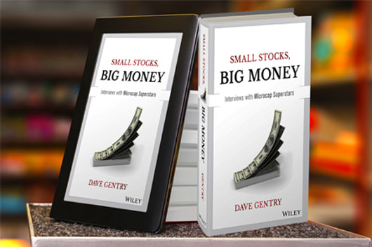 Small Stocks Big Money Book develop a solid investment strategy.